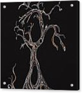Trees 4 Acrylic Print