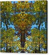 Trees Alive Acrylic Print by Susan Leggett