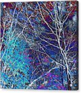 Trees Alive With Color Acrylic Print