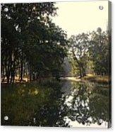 Trees And Lake Print Acrylic Print