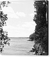 Trees At The Lakeside, Cave Point Acrylic Print