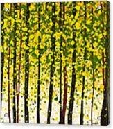 Trees At Twilight Xviii Acrylic Print