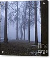 Trees Greenlake With Man Walking Acrylic Print