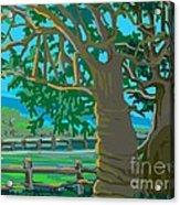 Trees In Love Acrylic Print
