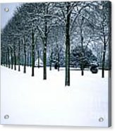 Trees In Snow Acrylic Print