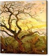Trees Of Crows Acrylic Print