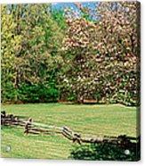 Trees On A Field, Davidson River Acrylic Print