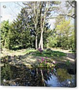 Trees Reflection In The Pond Acrylic Print