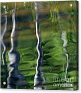 Trees Reflections On The River Acrylic Print
