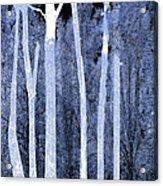 Trees Square Acrylic Print