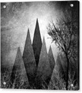 Trees V I I I Acrylic Print