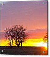 Trees Watching The Sunrise Panorama View Acrylic Print