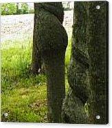 Trees With A Twist Acrylic Print