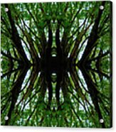 Treetops Abstract Acrylic Print