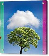 Treetypch Acrylic Print