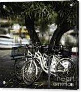 Tres Bikes Acrylic Print