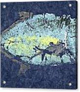 Gyotaku Trevally Acrylic Print