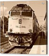 Tri Rail 808 Acrylic Print