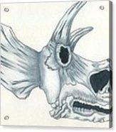 Tricerotops Skull Acrylic Print