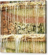 Trickle-down Effect Acrylic Print