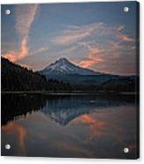 Trillium Twilight Acrylic Print