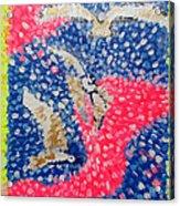 Trio Of Birds Acrylic Print