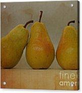 Trio Of Pears Acrylic Print