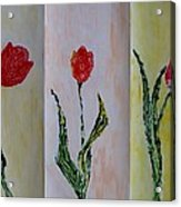 Trio Of  Red Tulips Acrylic Print