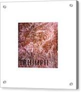 Triumph_09.23.12 Acrylic Print