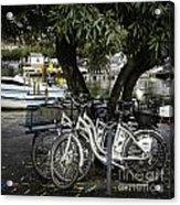 Trois Bikes Acrylic Print