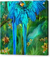 Tropic Spirits - Gold And Blue Macaws Acrylic Print