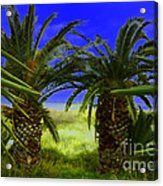 Tropical Beach Light Hdr Effect Acrylic Print