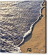 Tropical Beach With Footprints Acrylic Print
