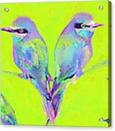 Tropical Birds Blue And Chartreuse Acrylic Print