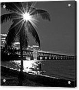 Tropical Bridge In Black And White Acrylic Print