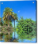 Tropical Exotic Jungle And Water Acrylic Print