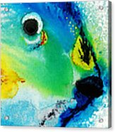 Tropical Fish 2 - Abstract Art By Sharon Cummings Acrylic Print