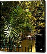 Tropical Invitation Acrylic Print
