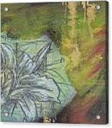 Tropical Lily No.3 Acrylic Print