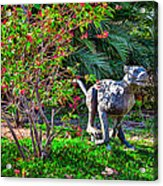 Tropical Mountain Lion Acrylic Print