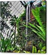 Tropical Paradise Falling Waters Buffalo Botanical Gardens Series   Acrylic Print