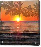 Tropical Spirits - Palm Tree Art By Sharon Cummings Acrylic Print