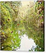 Tropical Treasure Acrylic Print