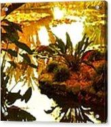 Tropical Water Garden Acrylic Print