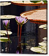 Tropical Waters Floral Charm Acrylic Print