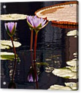 Tropical Waters Floral Charm -- Version 2 Acrylic Print