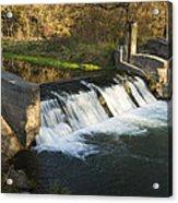 Trout Run Creek Dam 1 Acrylic Print