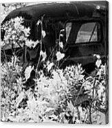 Truck Flowerpot - Infrared Acrylic Print
