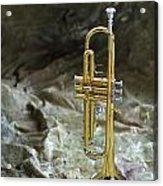 Trumpet N Canvas Acrylic Print