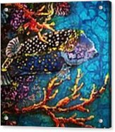 Trunkfish - Male Acrylic Print
